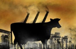 Cowspiracy, The Vegan Agenda