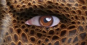 Rule of the Reptiles